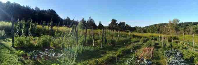gardenpan